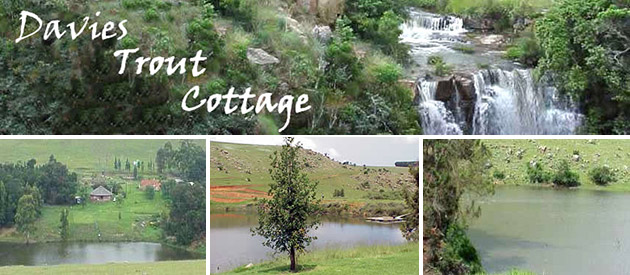 Davies Trout Cottage - Machadodorp accommodation - Mpumalanga